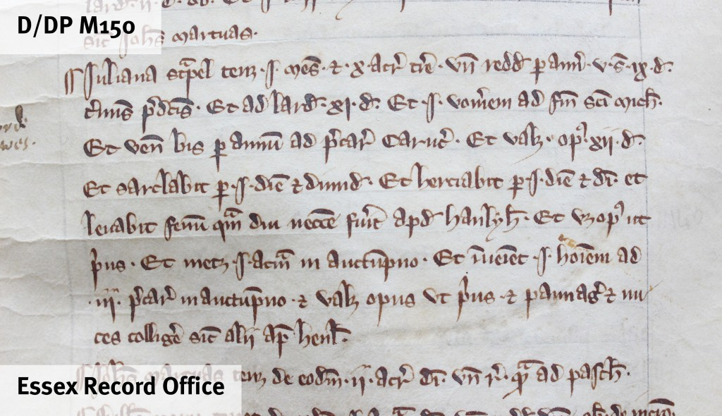 The 'Domesday of Barking' records that Juliana Strapel (you can make out her name at the beginning of the first full line shown here) held one messuage and 10 acres. Her obligations from this landholding included the payment of 5s 3d. annually, 9d. 'lardsilver' (a payment to the larder of Barking Abbey), and payment of one ploughshare at Michaelmas. She was also obliged to plough twice a year, hoe and harrow each for one and a half days, make hay, reap one acre in the autumn, and provide a man to work for three days. She also owed pannage, where pigs were allowed to roam in the wood to feed off acorns, and was obliged to collect nuts