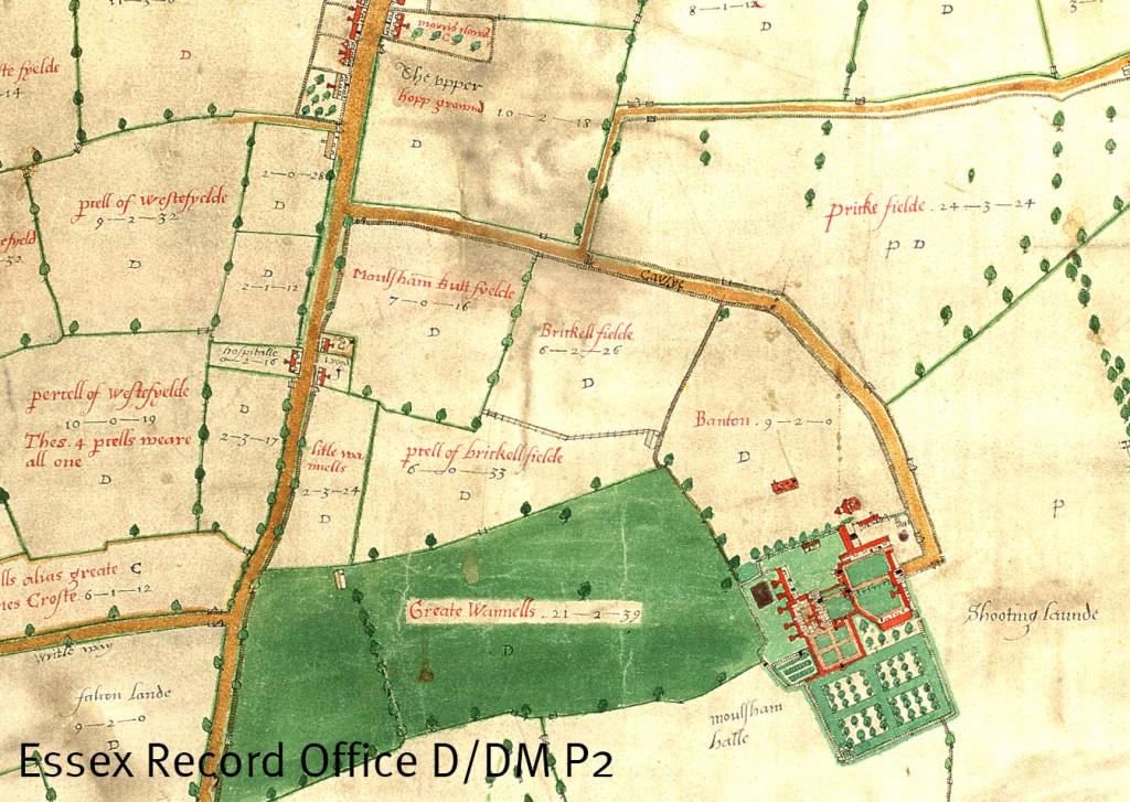 Extract from John Walker's map of Moulsham, 1591, showing Moulsham Butt Field (D/DM P2)