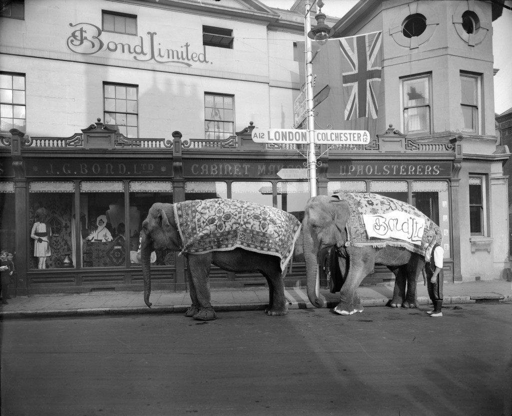 An advertisement for Bond's involving elephants