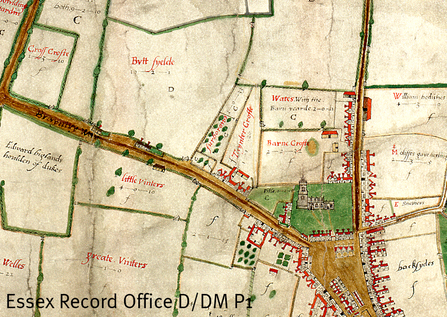 Extract from John Walker's 1591 map of Chelmsford showing Butt Field (D/DM P1)