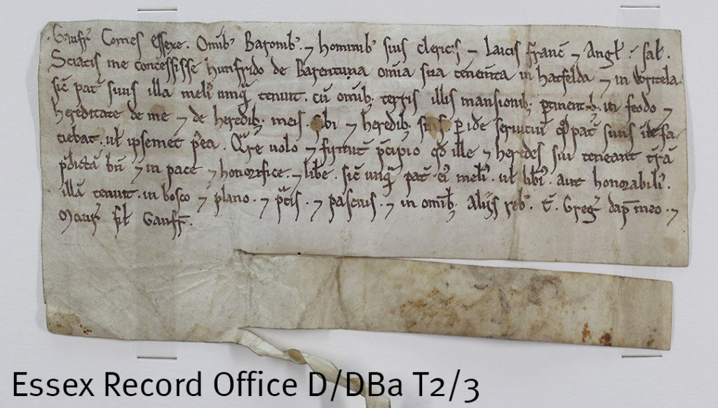 In this second deed Geoffrey he is described as Gaufr[ido] Comes Essexe (Geoffrey, Earl of Essex). In this document he confirms a grant of lands in Hatfield [Broad Oak] and Writtle to Humphrey de Barentun. (D/Dba T2/3)